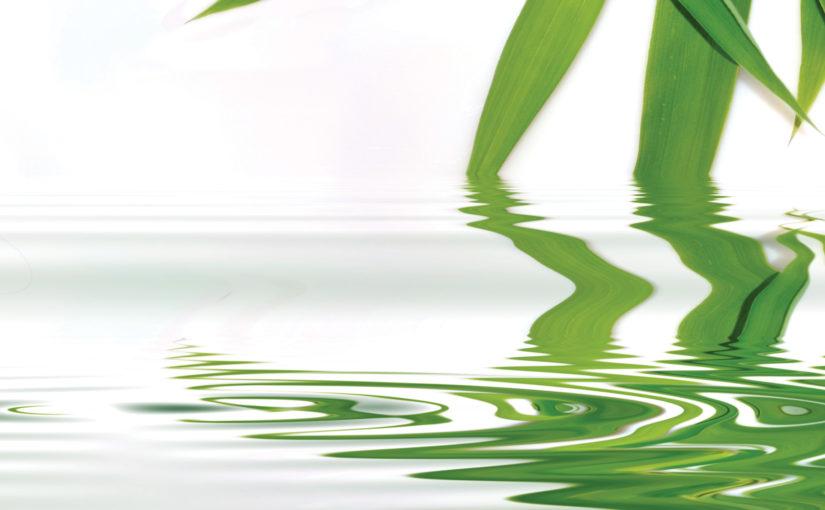 Green Flash Chromatography Webinar